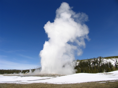 Old Faithful erupting in the winter in Yellowstone Park